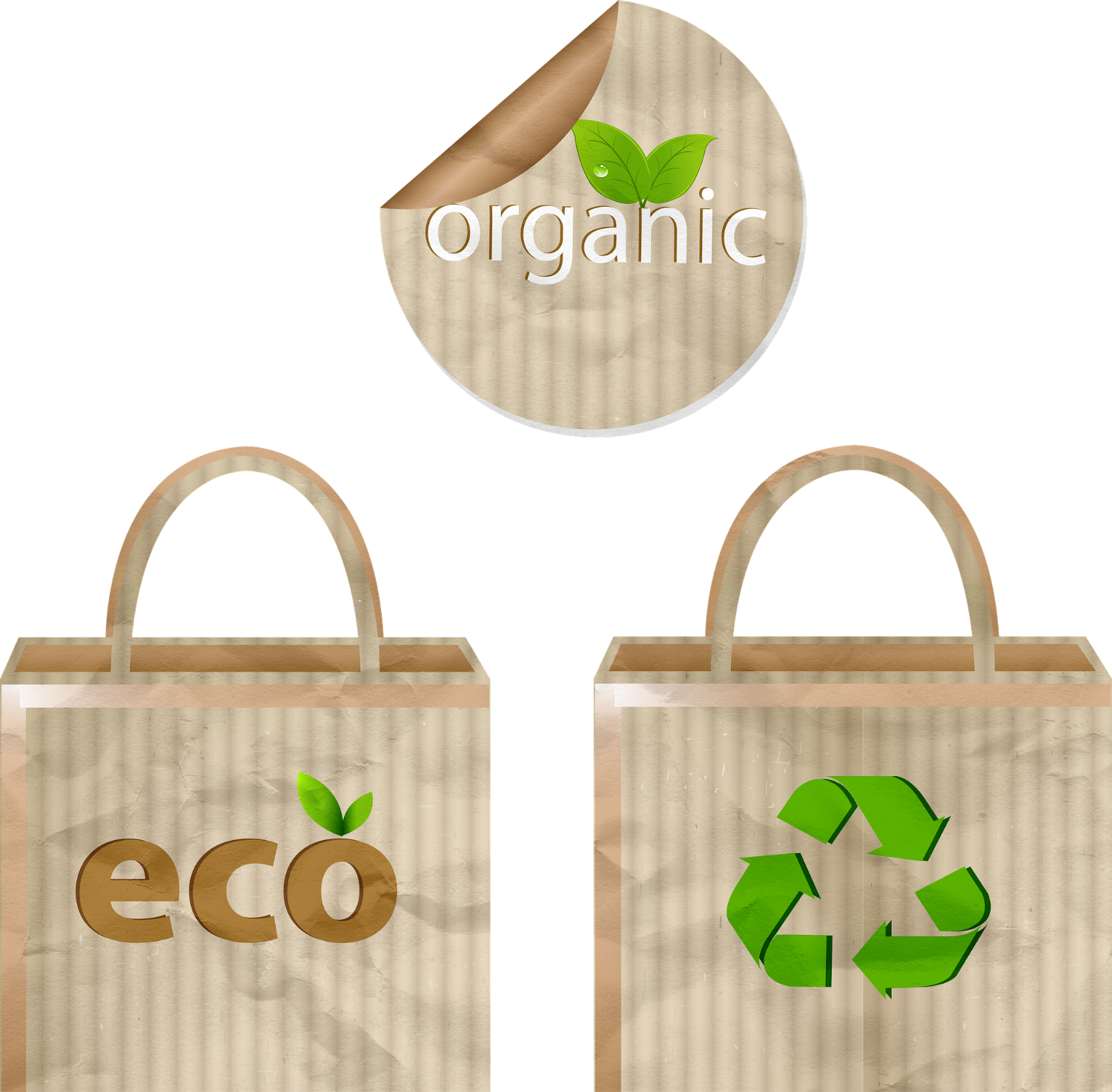 biodegradable compostable materials